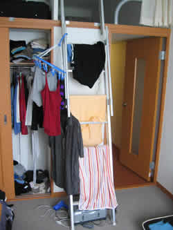 the ladder cum clothes horse